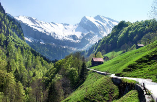 id-love-to-see-switzerland